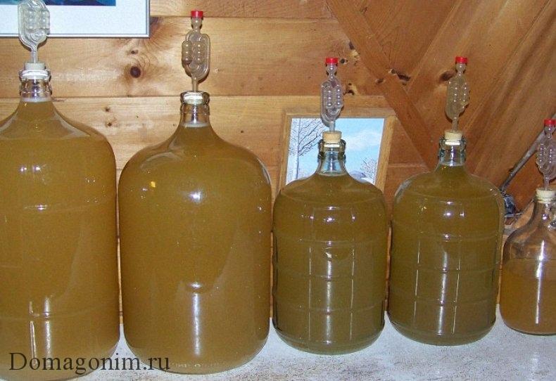 Процесс брожения домашнего вина под гидрозатвором