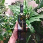 Вино Nobilomo Malvasia (Нобиломо Мальвазия) белое полусладкое|Вина Италии
