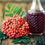Вино из красной рябины в домашних условиях