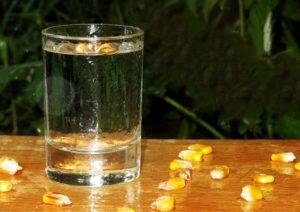 Самогон из кукурузы в домашних условиях