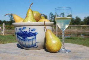 Грушевое вино в домашних условиях, вино из груши-дички